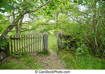 Patinated old wooden gate at a footpath in green environment