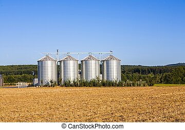 field in harvest with silo - golden corn field in harvest...