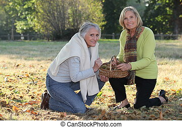 senior women picking chestnuts