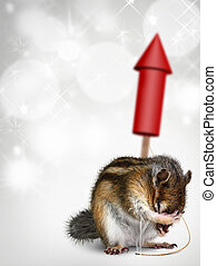 Chipmunk with fireworks, holiday background - Funny chipmunk...