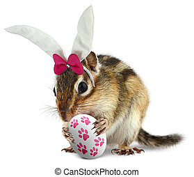 Funny chipmunk with bunny ears and easter egg - Funny...