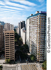 Avenue in the city of sao paulo