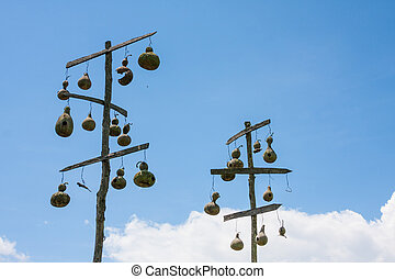 Gourd Bird Houses - Gourd bird houses hanging from two...