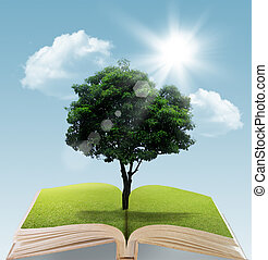 ok with tree on natural background - Book with tree on...