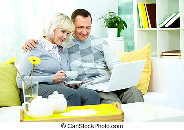 Computer work - Portrait of mature man and his wife working...