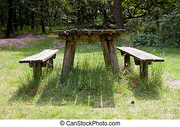 old empty table fot picknick in the forest