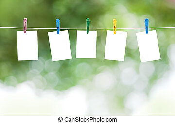 Blank photos hanging on a clothesline, summer defocus...