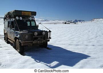 Landy in Snow