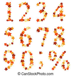 Autumn maples leaves numeral