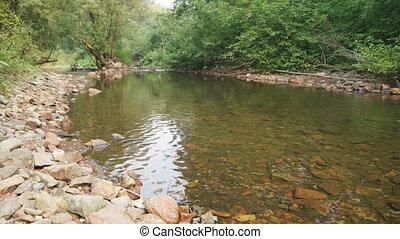 Forest Creek Landscape 02 - Forest Creek, natural landscape....