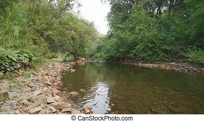 Forest Creek Landscape 01 - Forest Creek, natural landscape...