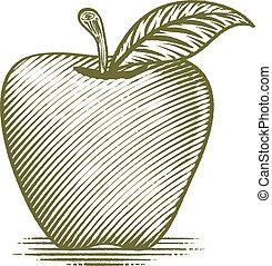 drzeworyt, dojrzały, Jabłko