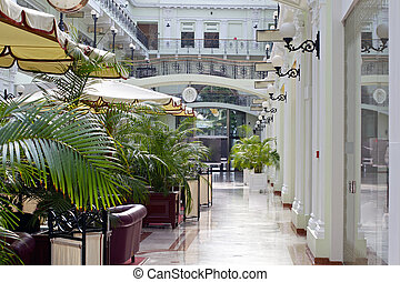 Elegant Shopping Mall - A image taken inside a shopping...
