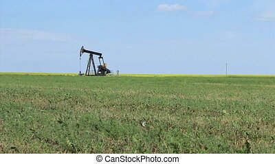 Oil Pump On The Prairies - A faithful oil pump works...