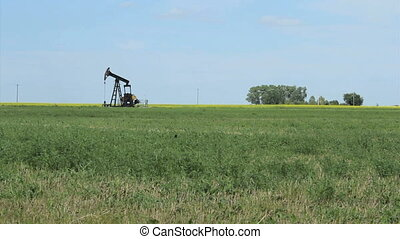 Oil Pump Working Hard In Prairies - A faithful oil pump...