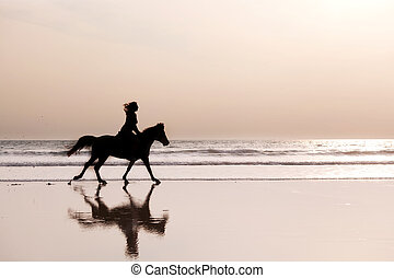Silhouette of the girl skipping on a horse on an ocean coast...