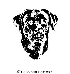 Head of dog, labrador retriever - Illustration of dog,...