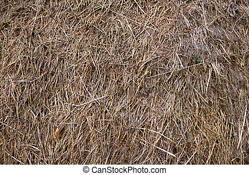straw background - Straw background. Agricultural and...