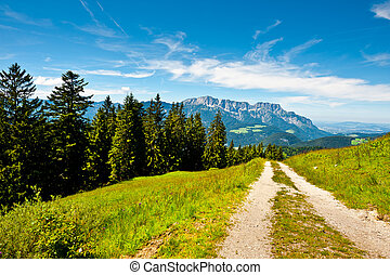 Dirt Road in the Bavarian Alps, Germany