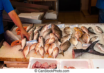 Fish Market - Fresh fish arrangement displayed on the fish...