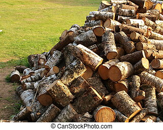 Stack of fire wood outside - Wood logs in pile on green lawn