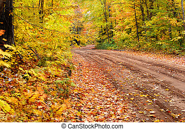 Beckoning Backroad - Autumn colors this backroads, logging...
