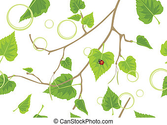 Birch sprig Spring background - Birch sprig Decorative...