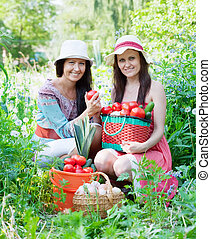 women with  harvested vegetables in garden