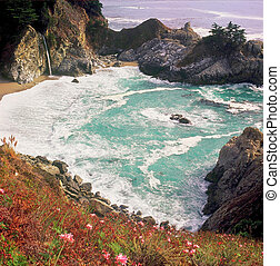 Julia Pfeiffer Burns State Park,CA - A scenic trail...