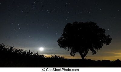 Perseid meteor shower time lapse - Time lapse video of the...