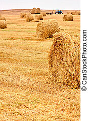 Harvested field with yellow straw bales an tractor
