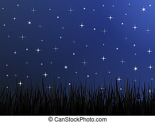 Night Sky - Silhouette of grass and night sky with stars