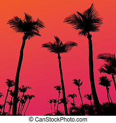 Palm Trees Sunset Silhouette - Tropical coconut palm tree...