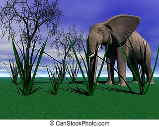elephant and grass and trees