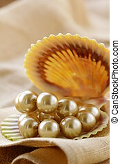pearl  necklace in shell