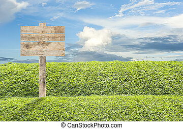 Wooden billboard on the grass background