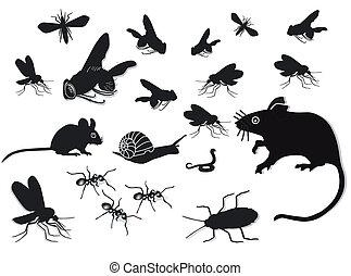Pests and vermin