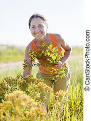 Mature woman gathers herbs