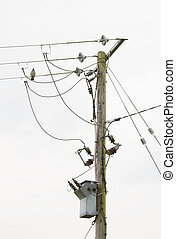 Power lines and transformer on pole