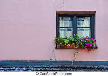 Window - Typical Bavarian Window Decorated With Fresh...