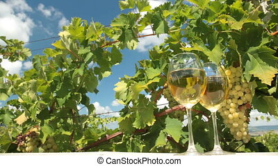 White Wine - Two glasses of white wine and bunch of muscat...