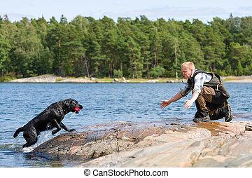 Dog training - The Labrador retriever fetch a dummy for its...
