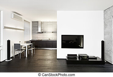 Modern minimalism style kitchen and drawing room interior in...