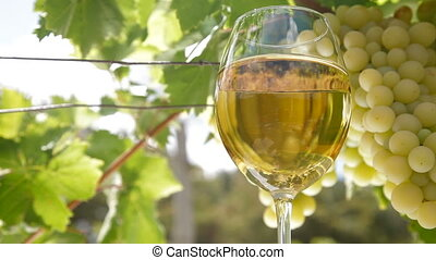 White Grape and Wine Glass