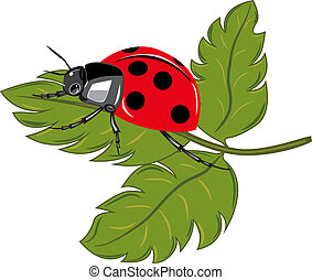 Ladybird sitting on the green leaf vector illustration.