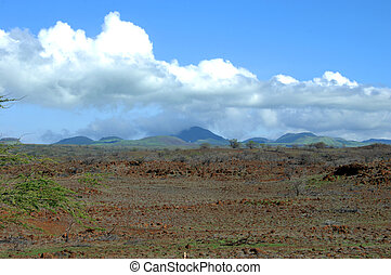 Cinder cones - Big Island of Hawaii has many dormant cinder...