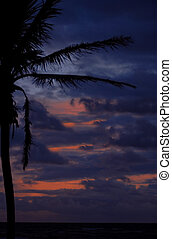 Another Day Ends in Paradise - The windward side of Oahu...
