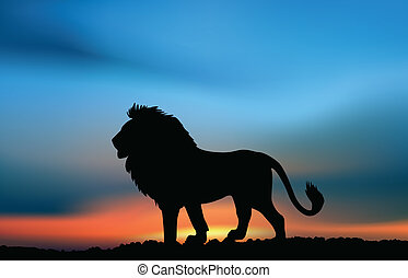africano, Leão, pôr do sol