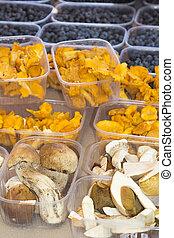 Boletus edulis and chanterelles