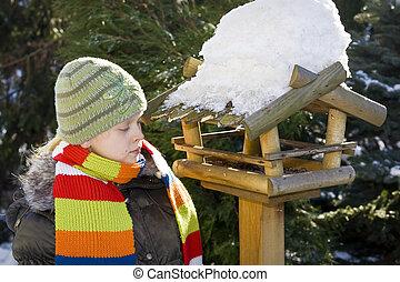 Bird feeder - Wooden feeder for birds in snowy garden